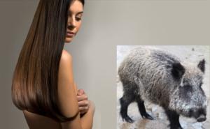 Wildschweinborstenbürste Haare kämmen